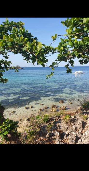 Isola di Malapasqua, Olgiata Diving Febbraio 2020, People 25