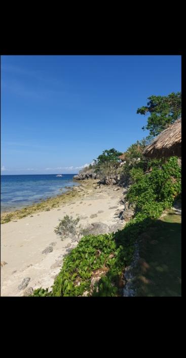 Isola di Malapasqua, Olgiata Diving Febbraio 2020, People 27