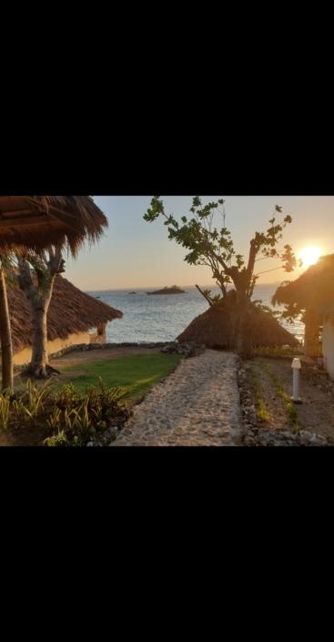 Isola di Malapasqua, Olgiata Diving Febbraio 2020, People 24