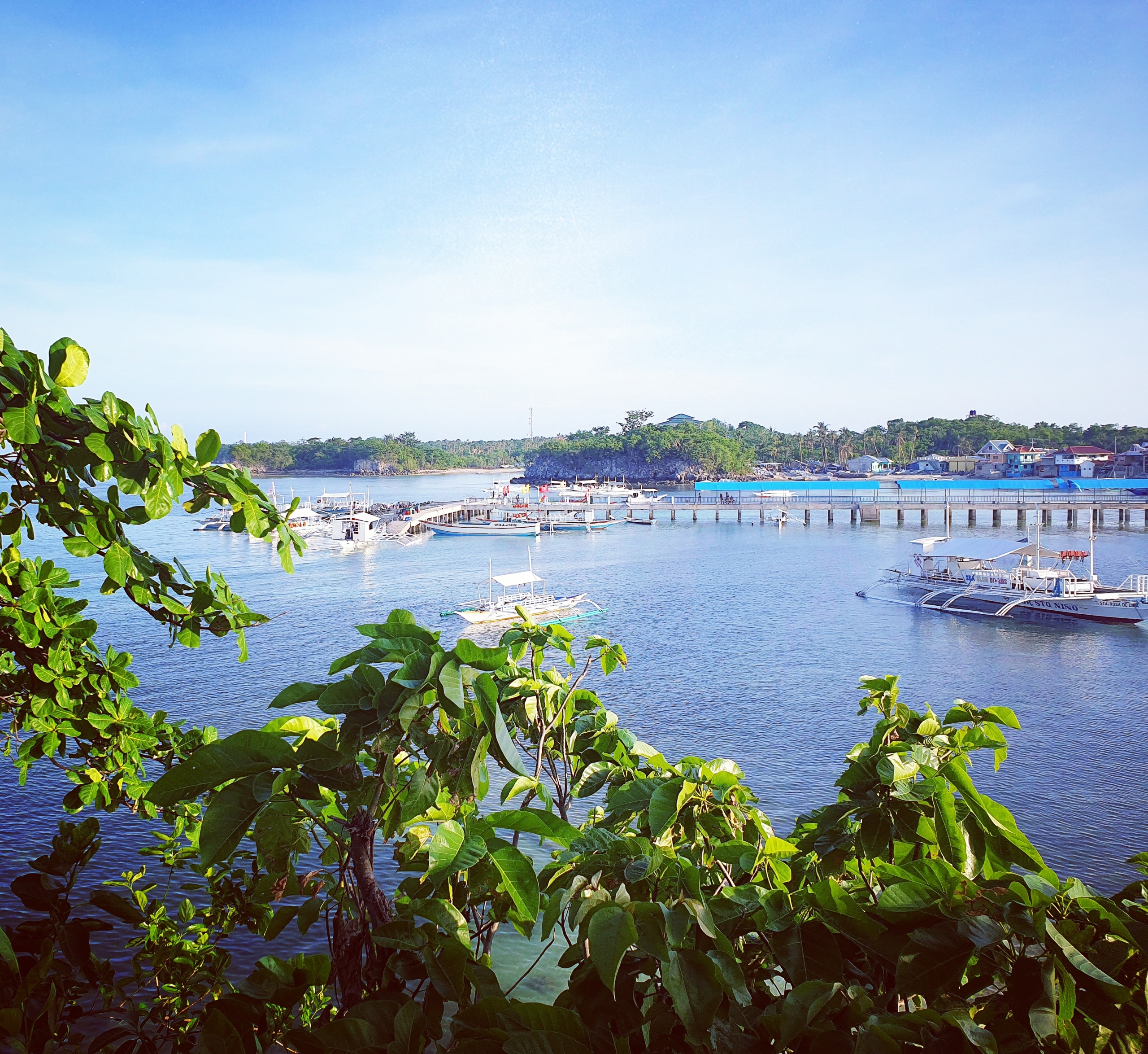 Isola di Malapasqua, Olgiata Diving Febbraio 2020, People 17