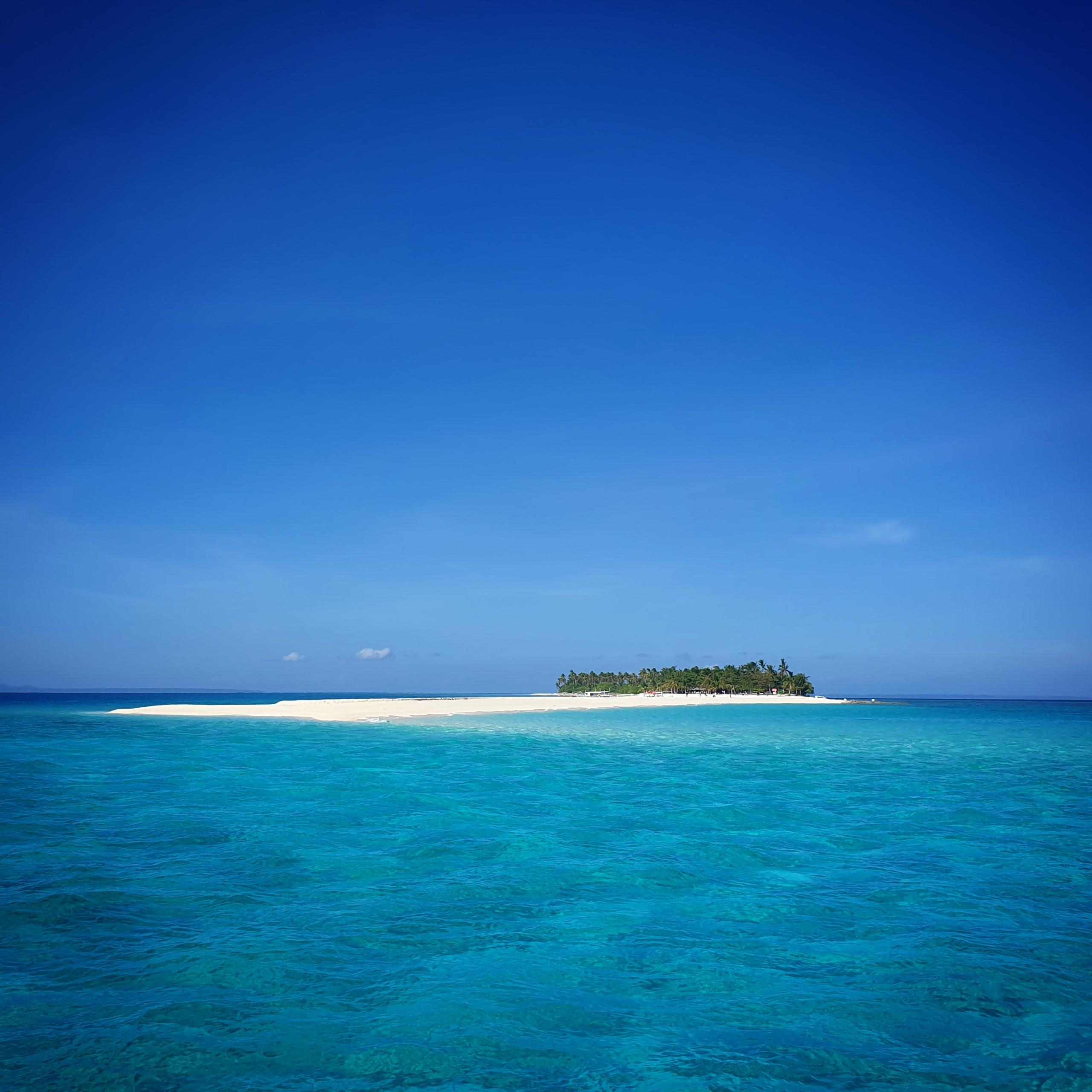 Isola di Malapasqua, Olgiata Diving Febbraio 2020, People 31